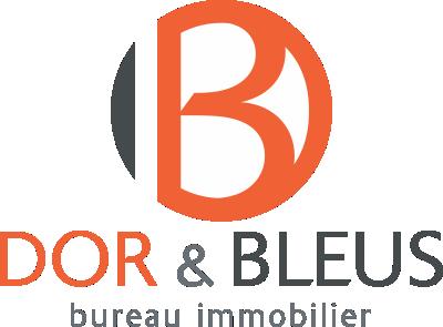 Expert immobilier à Liège Dor & Bleus