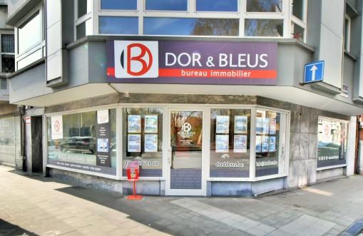 Agence immobilière Dor & Bleus à Liège