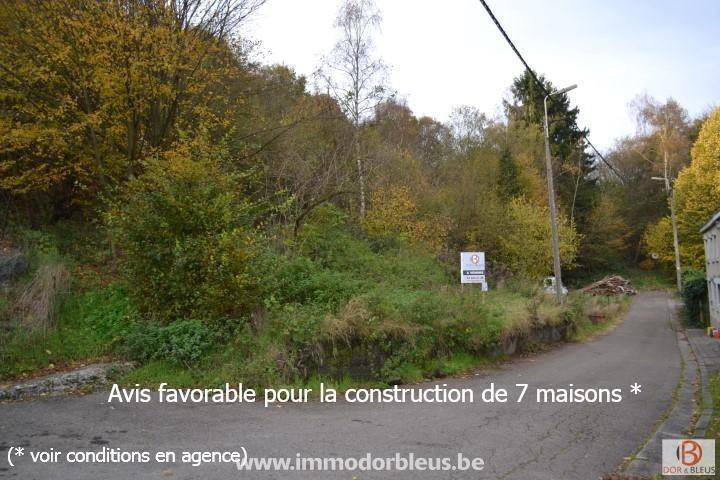 a-vendre-terrain-fleron-romse-1945368-0.jpg