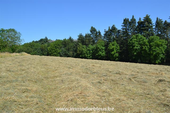 a-vendre-terrain-trooz-fraipont-3492857-4.jpg