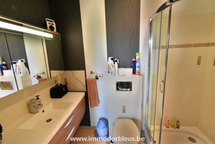 a-louer-appartement-seraing-jemeppe-sur-meuse-3784447-6.jpg