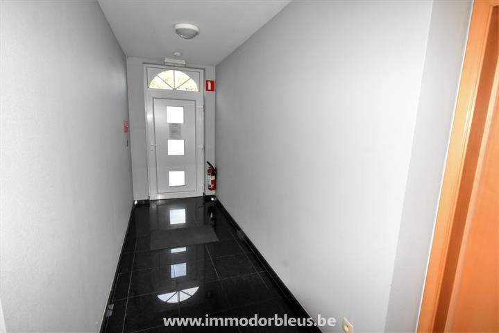 a-louer-appartement-seraing-jemeppe-sur-meuse-3784447-9.jpg