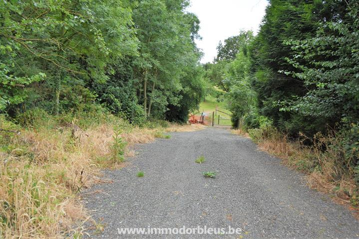 a-vendre-terrain-beyne-heusay-bellaire-3793012-6.jpg