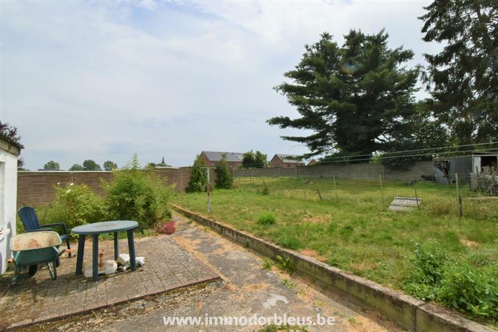 a-vendre-maison-berloz-hesbaye-waremienne-3795752-10.jpg