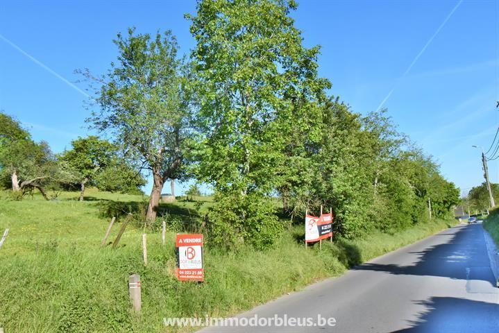 a-vendre-terrain-oupeye-3846799-1.jpg