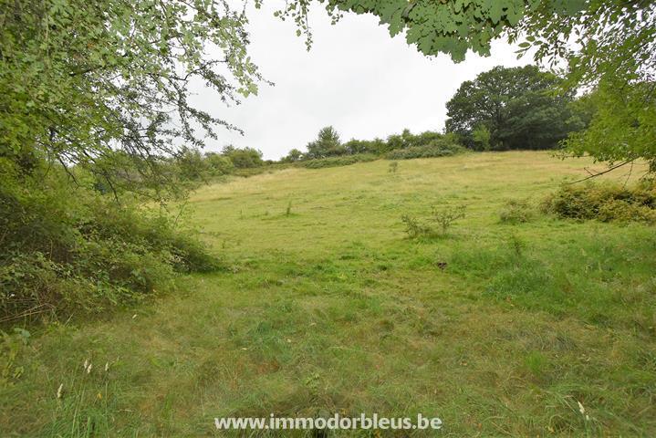 a-vendre-terrain-beyne-heusay-bellaire-3891522-0.jpg