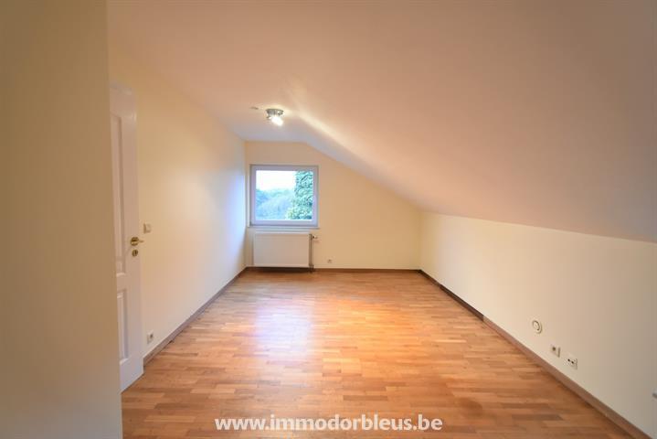 a-vendre-maison-plainevaux-neupr-3932138-7.jpg