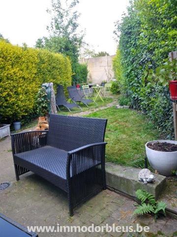 a-louer-maison-grivegnee-4015642-19.jpg