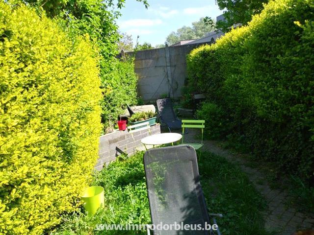 a-louer-maison-grivegnee-4015642-8.jpg
