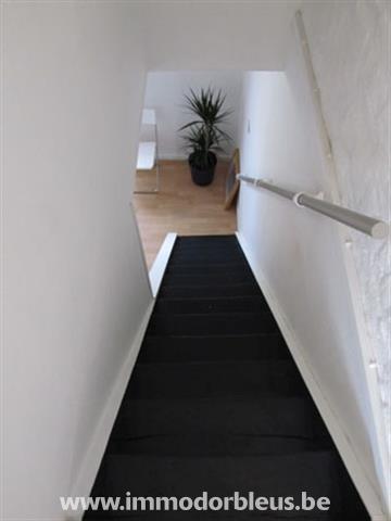 a-louer-maison-grivegnee-4015642-9.jpg