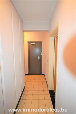 a-louer-appartement-liege-4058435-8.jpg