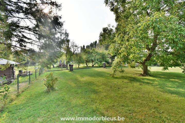 a-vendre-maison-saint-georges-sur-meuse-4147120-20.jpg