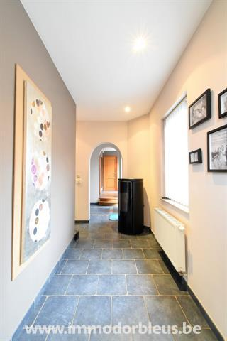 a-vendre-maison-beyne-heusay-bellaire-4273258-36.jpg
