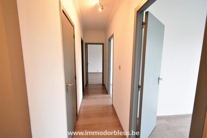 a-louer-appartement-seraing-4336472-14.jpg