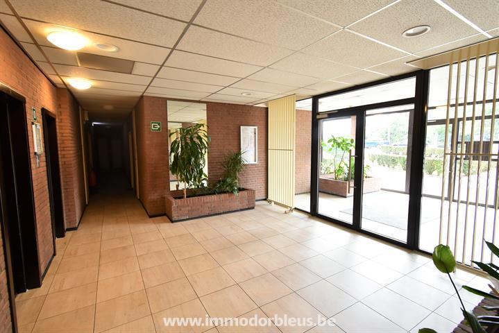 a-louer-appartement-seraing-4336472-15.jpg