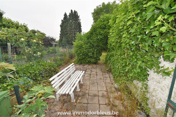 a-vendre-maison-saint-nicolas-montegne-4397963-24.jpg