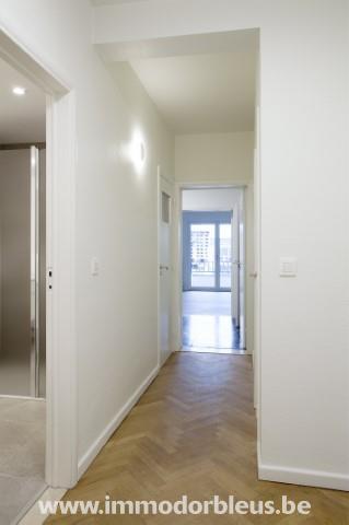 a-louer-appartement-liege-4494858-7.jpg